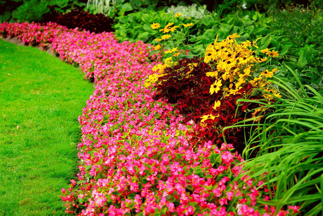 Bl easy flower garden designs guide for Landscape design flower beds