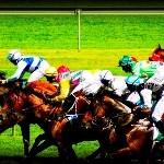 horse racing 2
